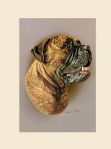Original Bullmastiff Painting
